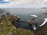 Nugget Point  Otago  South Island  New Zealand  Pacific
