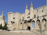 Notre Dame Des Doms Cathedral and Palais Des Papes  UNESCO World Heritage Site  Avignon  Provence