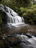 Purakaunui Falls  Southland  South Island  New Zealand  Pacific