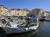 Fishing Boats in Vieux Port Harbour  St Tropez  Var  Provence  Cote D'Azur  France  Mediterranean