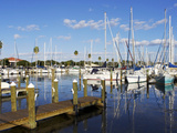Marina  St Petersburg  Gulf Coast  Florida  United States of America  North America