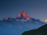Machapuchare (Machhapuchhre) (Fish Tail) Mountain  in the Annapurna Himal of North Central Nepal  N
