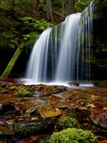 Fern Falls  Coeur D'Alene National Forest  Idaho Panhandle National Forests  Idaho  United States o