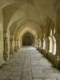 Cloisters  Fontenay Abbey  UNESCO World Heritage Site  Burgundy  France  Europe