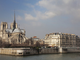 Ile De La Cite and Notre Dame Cathedral  Paris  France  Europe