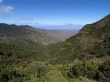 Parque Nacional De Garajonay  UNESCO World Heritage Site  Gomera  Canary Islands  Spain  Europe