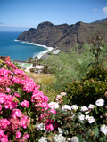 Mountain Landscape  La Gomera  Canary Islands  Spain  Atlantic  Europe