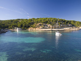 View across the Turquoise Waters of Cala Portals Vells Near Magaluf  Mallorca  Balearic Islands  Sp