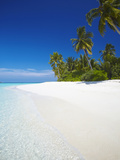 Tropical Island  Maldives  Indian Ocean  Asia