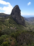 Parque Nacional De Garajonay  UNESCO World Heritage Site  Gomera  Canary Islands  Spain  Europe