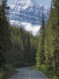 Road to Mount Edith Cavell  Jasper National Park  UNESCO World Heritage Site  British Columbia  Roc