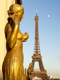 Statues of Palais De Chaillot and Eiffel Tower  Paris  France  Europe