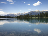 Reflections in Lake Beauvert  Jasper National Park  UNESCO World Heritage Site  British Columbia  R
