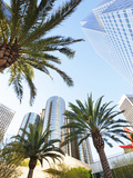 Downtown  Los Angeles  California  United States of America  North America
