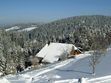 Winter Landscape Near Thurner  Black Forest  Baden-Wurttemberg  Germany  Europe