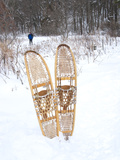 Snowshoes Sticking Out of Snow with Skiier in Background  Minnesota  United States of America  Nort