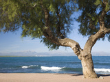 View across the Bay of Alcudia from Seafront Promenade  Colonia De Sant Pere  Near Arta  Mallorca