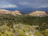 Thunderstorm Near Los Alamos  New Mexico  United States of America  North America