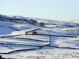 Winter View of Snow Covered Fields  Wensleydale  Yorkshire Dales National Park  North Yorkshire  En