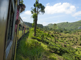 Train from Kandy to Hatton  Hill Country  Sri Lanka  Asia