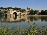 Pont Saint-Benezet and Avignon City Viewed from across the River Rhone  Avignon  Provence  France
