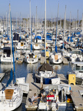 Marina in Dana Point Harbor  Orange County  California  United States of America  North America