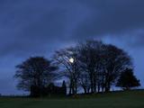 Ruined Farm Near Crieff  Perthshire  Scotland  United Kingdom  Europe