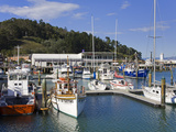Inner Harbour  Gisborne  Eastland District  North Island  New Zealand  Pacific