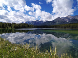 Herbert Lake and Bow Range  Banff National Park  UNESCO World Heritage Site  Alberta  Rocky Mountai