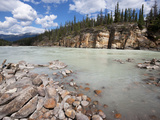 Upper Athabasca River Near Athabasca Falls  Jasper National Park  UNESCO World Heritage Site  Briti