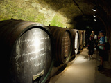 People and Wine Barrels Inside Cellar of Loisium Winery  Langelois  Niederosterreich  Austria  Euro