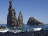 Lava Rock Columns Thrusting Upwards Out the Ocean Floor  Northern Madeira  Portugal  Atlantic Ocean