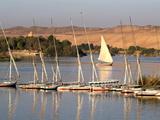 Nile Scene Near Aswan  Egypt  North Africa  Africa