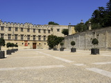 Musee Du Petit Palais (Museum)  Avignon  Provence  France  Europe