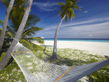 Hammock and Tropical Beach  Maldives  Indian Ocean  Asia