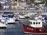 Harbour and Town  Lyme Regis  Dorset  England  United Kingdom  Europe
