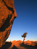 Sunset Casts Shadows on Boulders in Joshua Tree National Park  California  United States of America