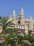 Palma Cathedral (La Seu)  Palma De Mallorca  Mallorca (Majorca)  Balearic Islands  Spain  Mediterra