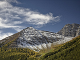 Fall Color and Fresh Snow Near Highwood Pass  Peter Lougheed Provincial Park  Kananaskis Country  A