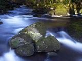 River Teign  Dartmoor National Park  Devon  England  United Kingdom  Europe