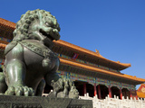 Male Bronze Lion  Gate of Supreme Harmony  Outer Court  Forbidden City  Beijing  China  Asia
