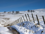 Track onto the Fell in Winter  Lower Pennines  Cumbria  England  United Kingdom  Europe