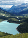 Peyto Lake  Banff National Park  UNESCO World Heritage Site  Alberta  Rocky Mountains  Canada  Nort