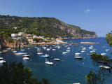 View over Bay  Aiguablava  Near Begur  Costa Brava  Catalonia  Spain  Mediterranean  Europe