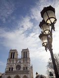 Notre Dame Cathedral and Lamp  Paris  France  Europe