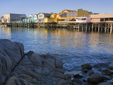 Breakwater Cove and Fisherman&#39;s Wharf  Monterey  California  United States of America  North Americ