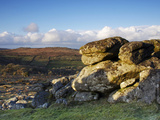 Evening Light  Hound Tor  Dartmoor National Park  Devon  England  United Kingdom  Europe