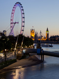 Houses of Parliament  Westminster and London Eye at Dusk  London  England  United Kingdom  Europe