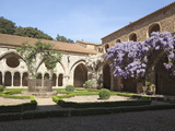 A Courtyard in Fontfroide Abbey  Languedoc-Roussillon  France  Europe