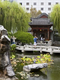 Chinese Garden of Friendship in Darling Harbour  Central Business District  Sydney  New South Wales